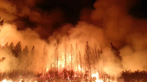 The_Rim_Fire_in_the_Stanislaus_National_Forest_near_in_California_began_on_Aug._17 _2013-0004